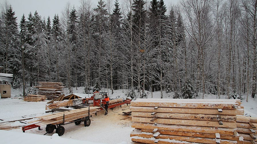 First the Heikkilä brothers chose the perfect trees to cut them into the cants of 180 mm