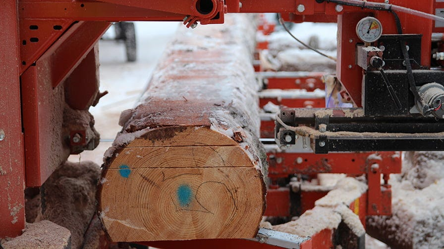 Wood-Mizer sawmill perfectly cuts timber even in winter, when logs are partially frozen