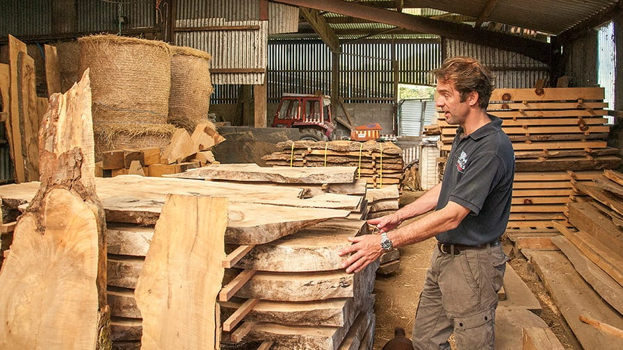 Henry at timber stock