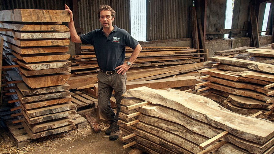 Henry with timber